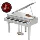 Digital Grand Piano Roland GP607 BK